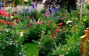 Gardening Service Melbourne