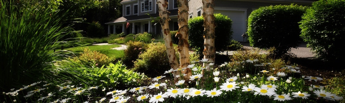 Cost Cutting Commercial Landscaping Tricks / Gardening / Landscaping Services / Enhance Services Melbourne